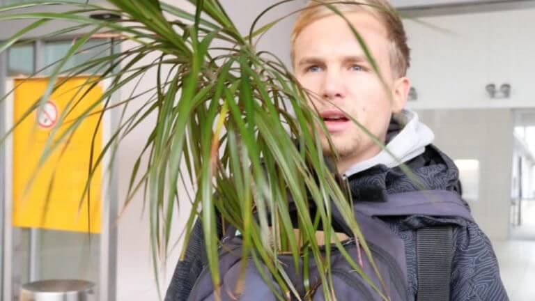 Lukas Winkel