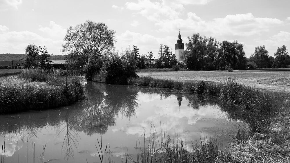 Karpfenland Aischgrund – ein Naturspektakel