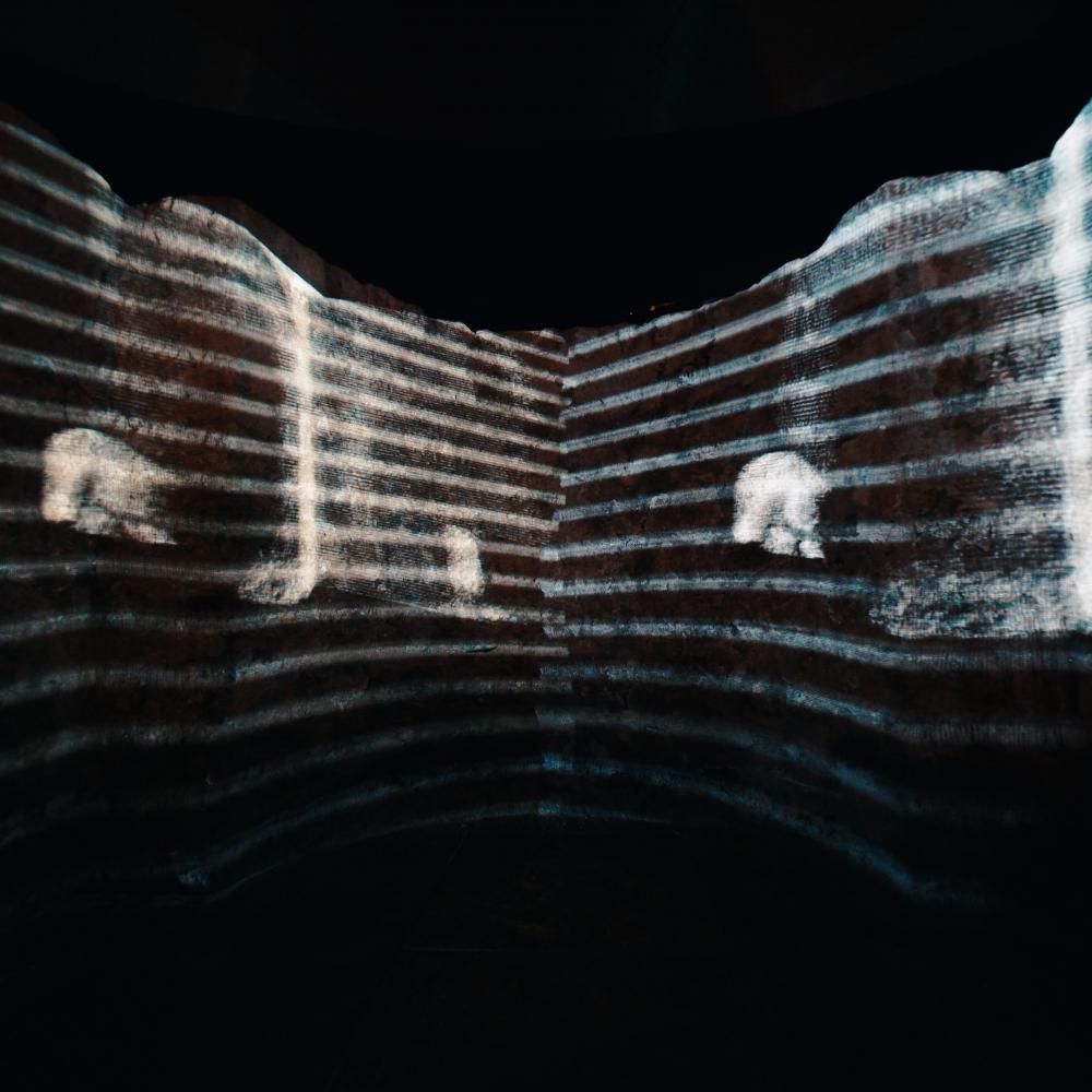 """Installation """"Eurydice"""". Foto: David Ferstl"""
