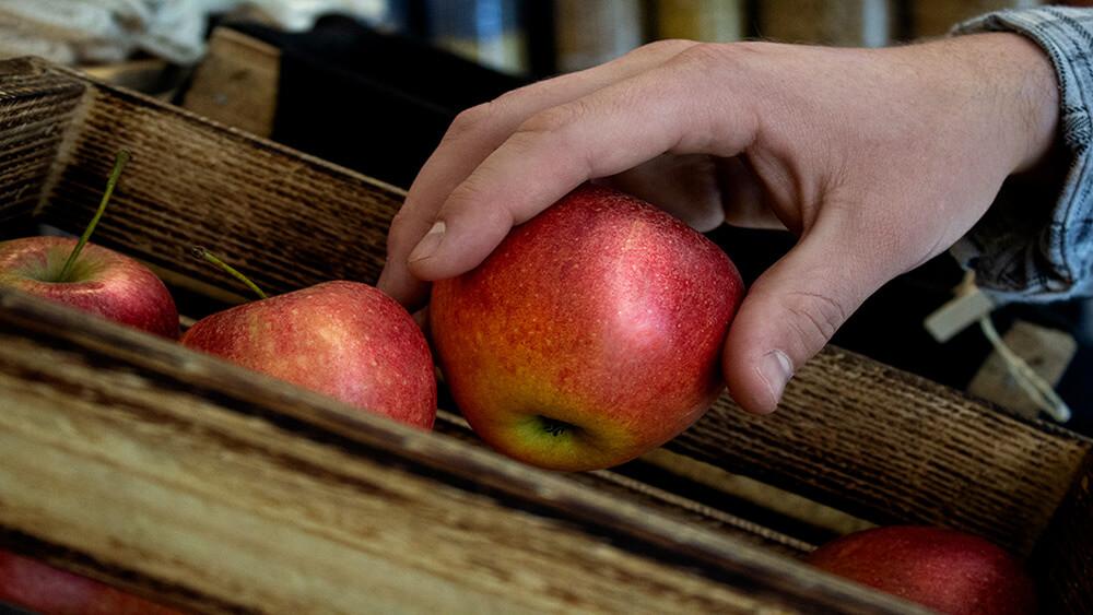 Eine Hand nimmt einen Apfel aus dem Korb.