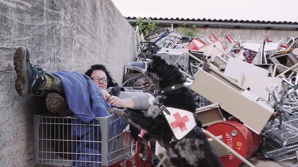 Ein Hund mit rotem Kreuz meldet das vermisste Opfer