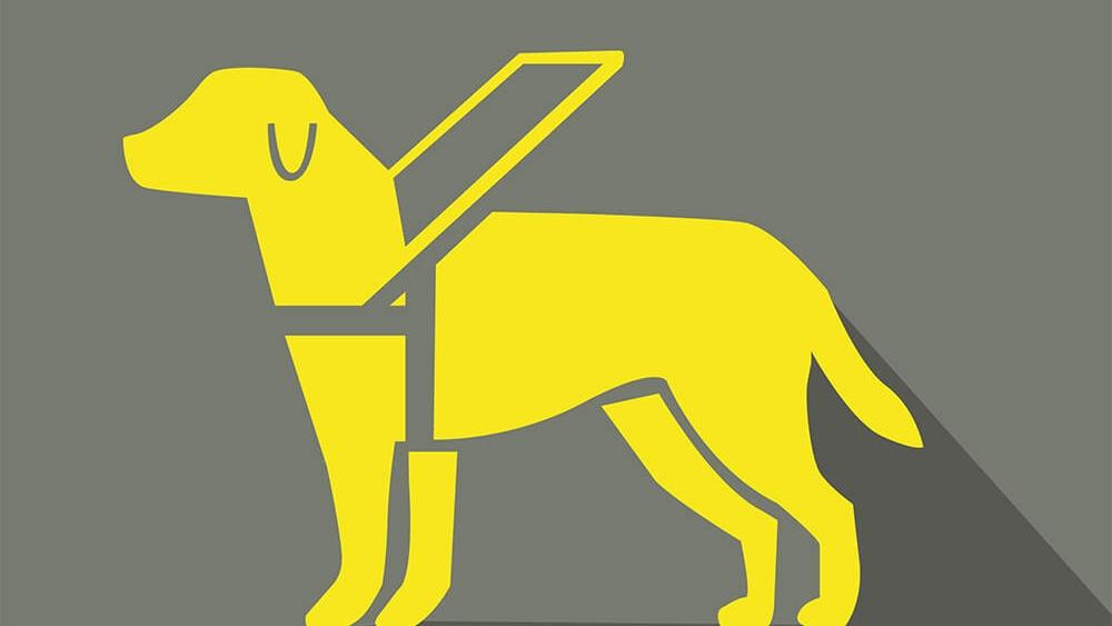 Ein gezeichneter Blindenhund
