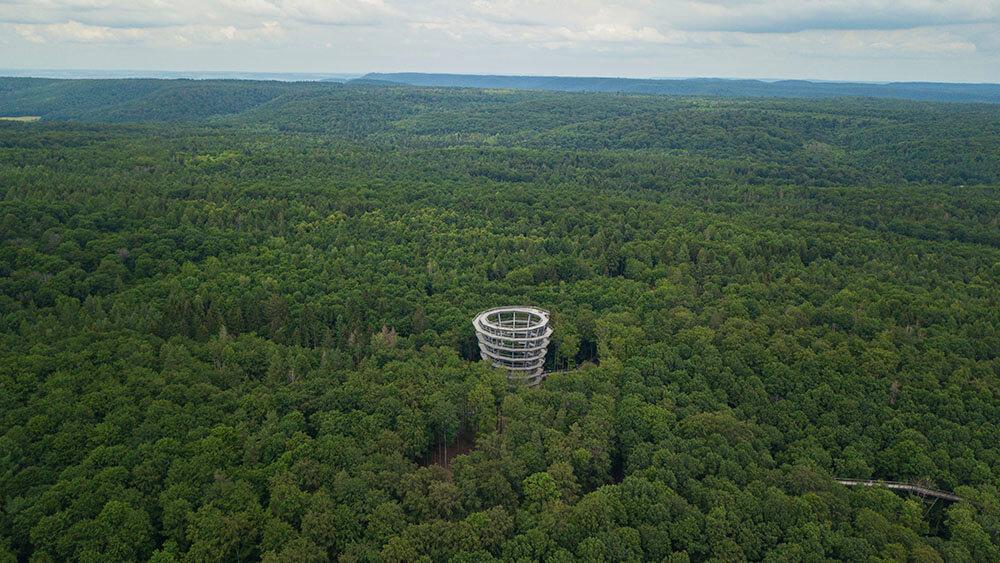 Ein Blick auf den Baumwipfelpfad Steigerwald.
