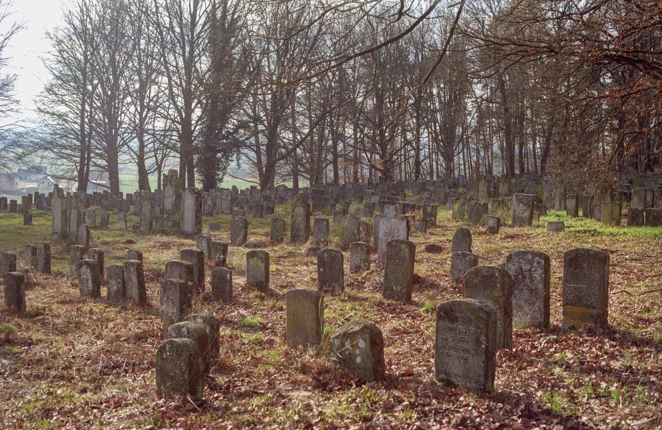 Impression des jüdischen Friedhofs in Bechhofen.